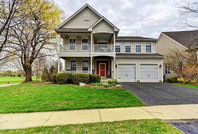 Geneva Single Family Home New: 3291 Homestead Lane