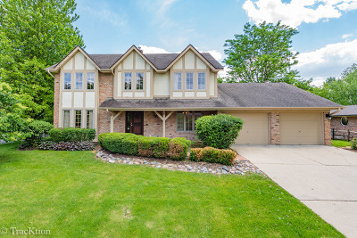 St. Charles Single Family Home New: 24 Stirrup Cup Court