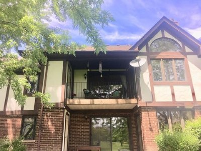 Tinley Park Condo/Townhouse New: 6645 West 180 Street #2W