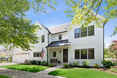 La Grange Park Single Family Home For Sale: 545 North Brainard Avenue