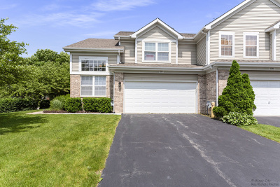 Roselle Condo/Townhouse Contingent: 1596 Brittania Way
