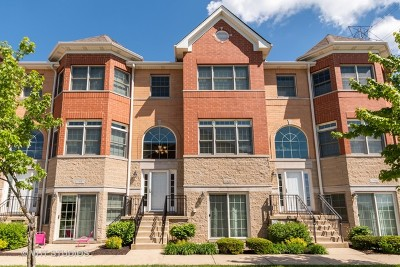 Orland Park Condo/Townhouse New: 17959 Fountain Circle
