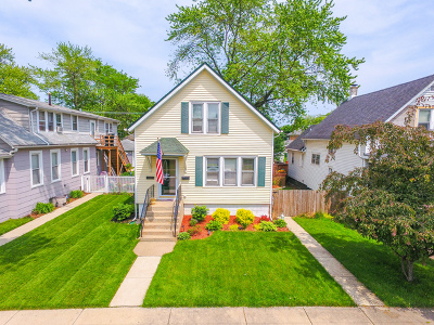 Cook County Single Family Home New: 12623 Elm Street