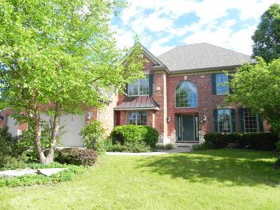 Frankfort Single Family Home New: 21768 Blue Bird Lane
