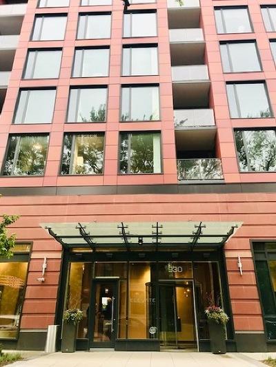 Lincoln Park Rental New: 930 West Altgeld Street #301