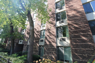 Lincoln Park Rental New: 2230 North Orchard Street #303