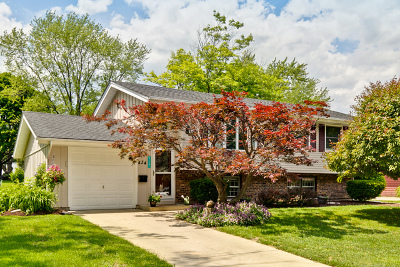 Schaumburg Single Family Home For Sale: 434 Plymouth Lane