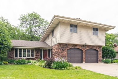 Schaumburg Single Family Home For Sale: 817 South Salem Drive
