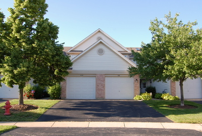 Schaumburg Condo/Townhouse For Sale: 1745 Nature Court