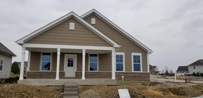 Plainfield Single Family Home New: 12518 South Kildare Avenue