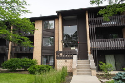 Willowbrook IL Condo/Townhouse New: $118,000