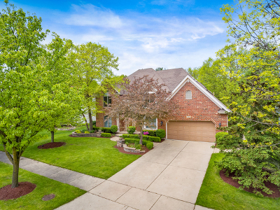 Naperville Single Family Home For Sale: 919 Rock Spring Road