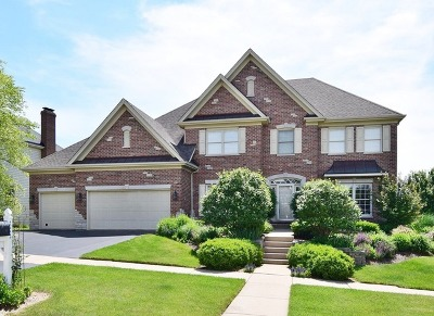 Single Family Home New: 40w445 Carl Sandburg Road