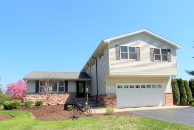 Woodstock Single Family Home For Sale: 12904 Jankowski Road