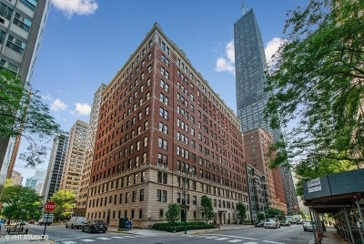 Condo/Townhouse New: 237 East Delaware Place #2A