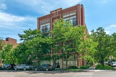 Condo/Townhouse New: 3101 North California Avenue #1S