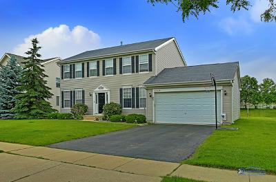 McHenry Single Family Home For Sale: 6508 Midleton Lane