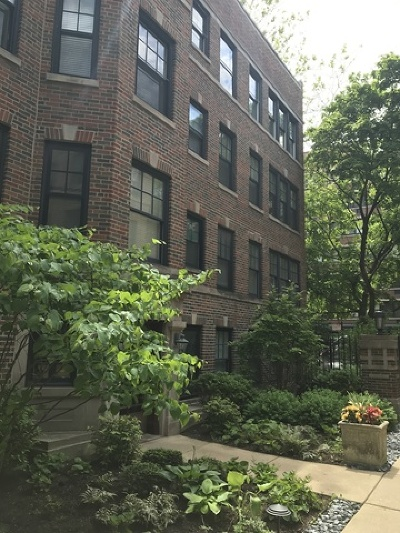 Condo/Townhouse New: 2309 North Commonwealth Avenue #3W