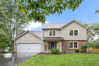 Naperville Single Family Home New: 1325 Goldenrod Drive