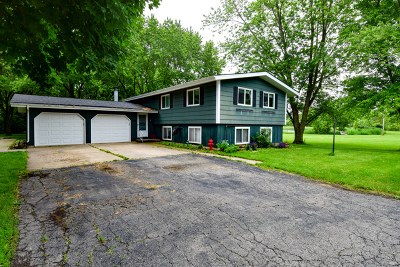 Plainfield Single Family Home New: 22537 West Renwick Road West