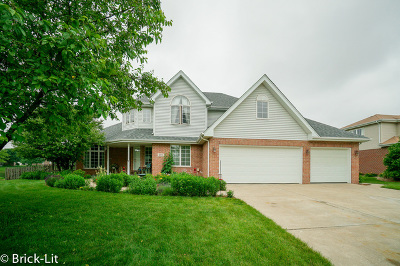 New Lenox Single Family Home For Sale: 1185 Sierra Ridge
