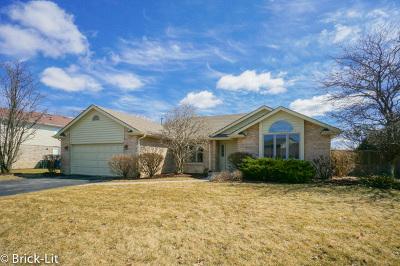 Mokena Single Family Home For Sale: 10513 Oconnell Avenue
