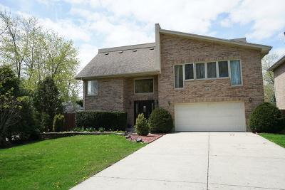 Palatine Single Family Home New: 638 North Franklin Avenue