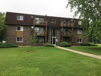 Mokena Condo/Townhouse For Sale: 19380 Wolf Road #12