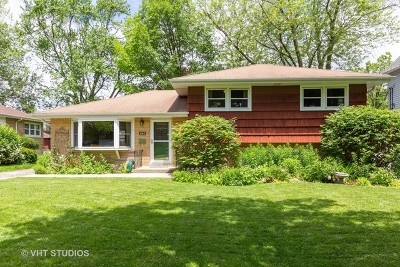 Downers Grove Single Family Home New: 434 Sherman Street