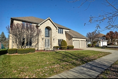 Orland Park Single Family Home For Sale: 7842 Woodruff Drive