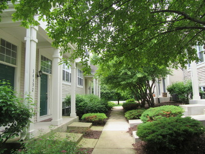 Round Lake Condo/Townhouse New: 34396 North Barberry Court