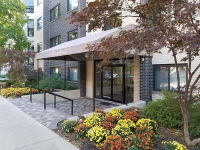 Lincoln Park Rental New: 515 West Wrightwood Avenue #510