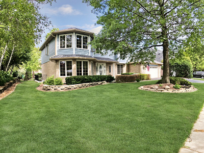 Orland Park Rental For Rent: 16825 Highbush Road