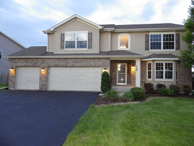 Minooka Single Family Home For Sale: 728 Oakwood Street