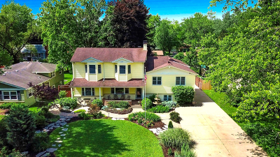 Glen Ellyn Single Family Home For Sale: 22w343 Birchwood Drive