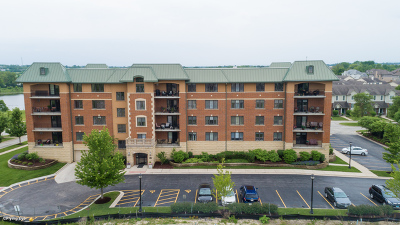 Orland Park Condo/Townhouse For Sale: 15630 Park Station Boulevard #404