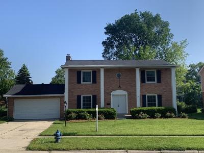 Palatine Single Family Home New: 434 East Carpenter Drive