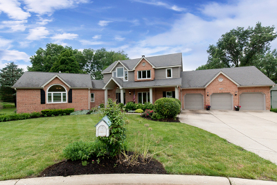 Naperville Single Family Home New: 7s670 Carriage Way Court