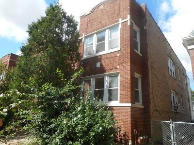 Portage Park Rental New: 5412 West Dakin Street #1