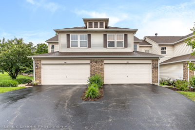 Glen Ellyn Condo/Townhouse For Sale: 42 Tanglewood Drive