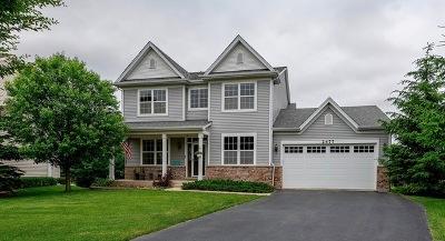 Wauconda Single Family Home For Sale: 2477 Cascade Court