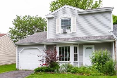 Island Lake Condo/Townhouse For Sale: 592 Yale Lane