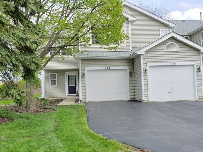 Schaumburg Condo/Townhouse New: 399 Maidstone Court