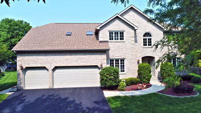 Naperville Single Family Home New: 519 Mayfair Lane