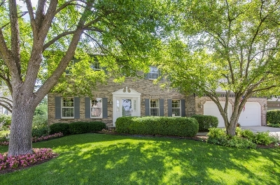 Naperville Single Family Home New: 2112 Primrose Lane