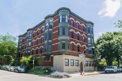 Condo/Townhouse New: 1049 West Barry Avenue #1E