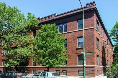 Condo/Townhouse New: 1306 West Granville Avenue #2