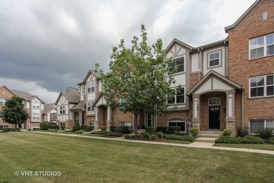 Lake Zurich Condo/Townhouse New: 764 June Terrace #764