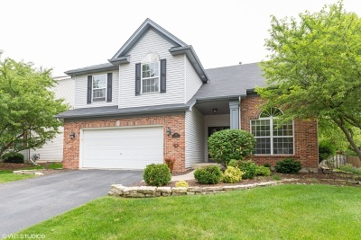 South Elgin Single Family Home For Sale: 589 Carriage Way