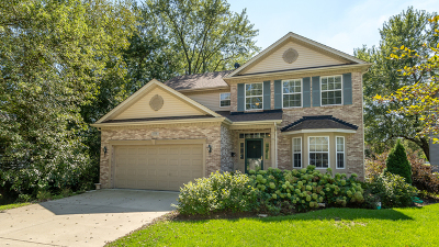 Palatine IL Single Family Home For Sale: $499,900
